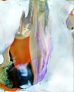 Daisuke Yokota: Color Photographs