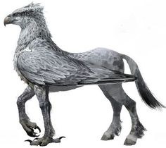 Hippogriff by Grey