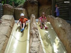 15 things for families to love about Disney's Animal Kingdom
