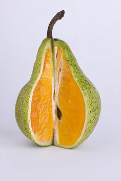 This is a neat edited photo because they made the inside of a pear look like the inside of an orange. It looks very interesting and the two fruits work very well together. The color of the fruit is very vivid and makes the fruit look appetizing. L'art Du Fruit, Fruit Art, Fresh Fruit, Photomontage, Level Design, Photoshop Lessons, Montage Photo, Creative Photos, Grafik Design