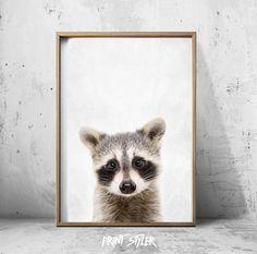 Raccoon Print - Raccoon Wall Art - RaccoonPoster - Raccoon Art - Raccoon Animal Prints by PrintStyler on Etsy https://www.etsy.com/transaction/1383715796