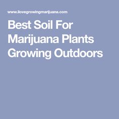 Best Soil For Marijuana Plants Growing Outdoors