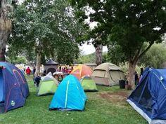 Pretoria Zoo Snooze - It's a fantastic experience for children!