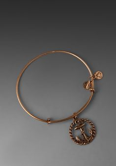 ALEX AND ANI Nautical Expandable Bangle in Russian Gold at Revolve Clothing - Free Shipping!