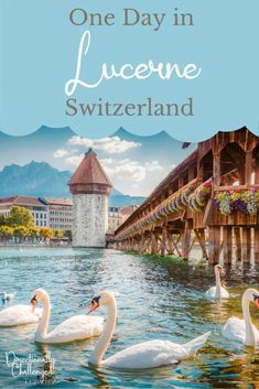 One Day in Lucerne, Switzerland: 10 Best Things to do Switzerland Travel Guide, Switzerland Cities, Lucerne Switzerland, Vacation Destinations, Vacations, Holiday Destinations, Vacation Ideas, Italy Tours, Voyage Europe