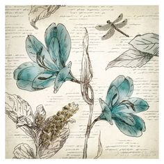 Blooming Teal I - Mini Prints by Aimee Wilson - AllPosters.ca