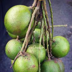 trinidad and tobago fruits and vegetables | trinichow.com