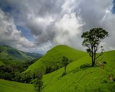 Get the best Information about Kudremukh Tourist Places. Get travel guides and plan your trip to Kudremukh.