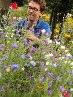 Sew a Wildflower Patch in March- Top Tips from our RSPB Expert Wildlife Gardening Adrian Thomas in his latest blog.
