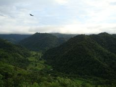 #valley #rainforest #costarica #ranchomargot #cloudforest #jungle #rancho #forestry #reforestation