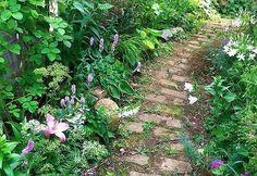 日陰で育つ花の種類。四季を感じる花々でガーデニングを楽しもう | iemo[イエモ]