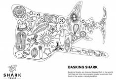 Print this sheet and color! Basking Shark, Sea Crafts, Tote Bag, Bags, Color, Handbags, Colour, Totes, Ocean Crafts