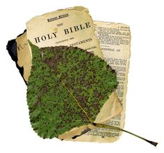 A vintage Bible collage with a fall leaf.
