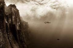 Christian Vizl, Mexico | World Photography Organisation