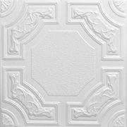 Evergreen - Styrofoam Ceiling Tile - 20x20 - R28c