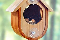 For Birds and Pets | WOOD Magazine