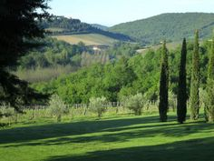 Private Chianti Wine  | Day Trips From Florence