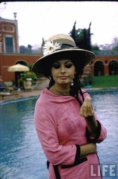 Sophia Loren, Rome, 1964.