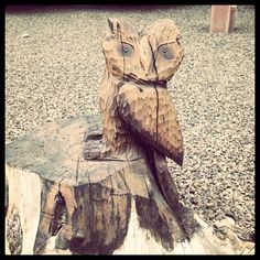 someone got really creative and carved an owl out of this tree trunk...nice!