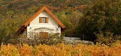 Fügés Vendégház Szent György hegy guesthouse Hungary