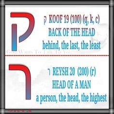 ק  KOOF 19 (100) (q, k, c) BACK OF THE HEAD behind, the last, the least   ר  REYSH 20  (200) (r) HEAD OF A MAN a person, the head, the highest