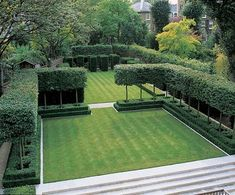 clean lines and open feel. these topiary hedges look lighter than top to bottom hedges - Luciano Giubbilei Garden Design
