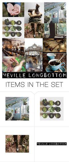 """Neville Longbottom Aesthetic"" by lyrastormborne ❤ liked on Polyvore featuring art"