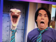 Spencer and the ostrich... i LOSE IT every time i see this!!!!!!! one reason i will never outgrow this show...