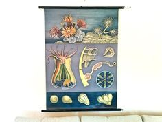 Corals, Wall Decoration, Vintage German Pull Down Chart, Jung Koch Quentell, Scientific Poster, Hagemann