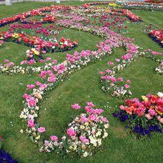 Simple Die Flora ist ein st dtischer botanischer Garten der mit einer Vielzahl exotischer Pflanzenarten und der ersten Palmenallee Deutschlands zum Flani u