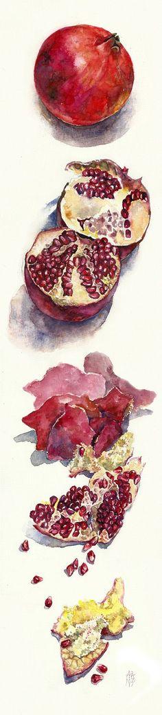 pomegranate by ~ayjaja