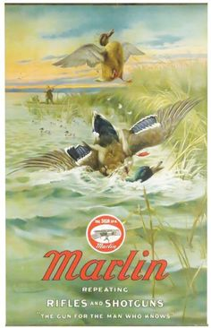 1908 Marlin Repeating Rifles and Shotguns Poster