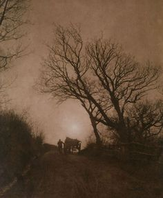 1890: 'November' by Francis Meadow Sutcliffe.