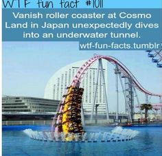 OMFG!!!!I WOULD TOTALY RIDE THAT. IT WOULD B SOOOOOOO COOL AND FUN WATCHING EVERYONE SCREAM AND PASS OUT!!!
