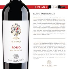 Rosso Salento I.G.P.: colore rosso rubino intenso con riflessi violacei; profumo complesso ed ampio, con note di frutta rossa. Vino di buona struttura, equilibrato e fresco.  Rosso Salento I.G.P.: deep ruby red with violet reflections; intense and wide on the nose, with red fruit notes. A full-bodied wine, fresh and balanced.  #SanMarzanoCantine #vino #wine #wein #vinho #winelovers #winetime #labels