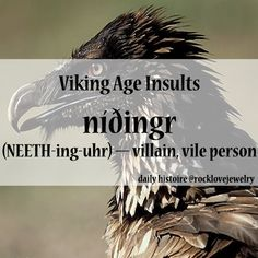 dog text wolf facts History beast norway fool eagle sheep insults curse saga hawk nordic historical viking icelandic proverb curse words Shepherd vikings norse bad words scandanavian germanic daily histoire rocklove rocklovejewelry facts of the day Viking Power, Viking Life, Viking Warrior, Norse Pagan, Old Norse, Norse Mythology, Viking Facts, Viking Quotes, Viking Culture