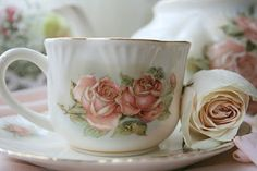 large cup & saucer with pink roses & white background.