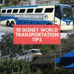 10 handy Disney World Transportation Tips to help you get around Walt Disney World Resort in Florida with ease during your Disney Vacation. Disney World Honeymoon, Disney World Packing, Walt Disney World Orlando, Disney World Rides, Disney World Vacation Planning, Disney World Florida, Disney World Parks, Walt Disney World Vacations, Disney World Resorts