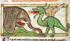 Risultati immagini per draghi medievali miniature
