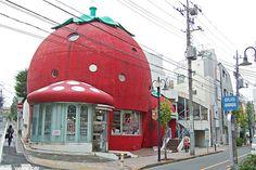 Strawberry House - 2-49-2 Denenchofu Ohta-ku Tokyo