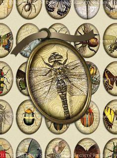 Steampunk Victorian Entomology with Scrolls by steamduststudios, $3.90