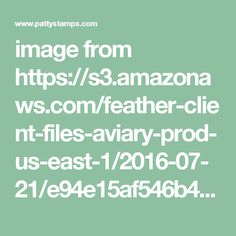 image from https://s3.amazonaws.com/feather-client-files-aviary-prod-us-east-1/2016-07-21/e94e15af546b49bdac3afce69798cdc0.png