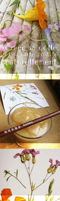 créer sa colle et sa carte postale naturellement