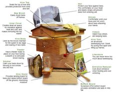 Image result for Beekeeping body parts
