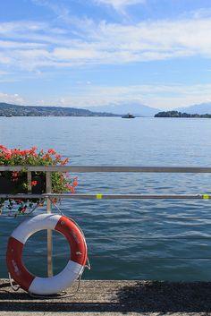 Zürichsee bei Horgen. Kanton Zürich. Switzerland