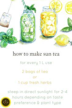 Grow a Herbal Tea Garden & Making Sun Tea ~Family Food Garden