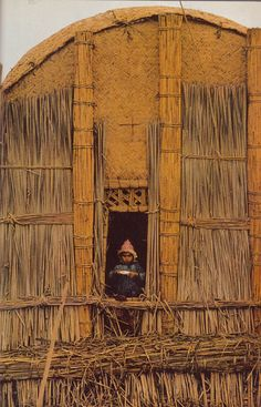 """Iraq   National Geographic April 1976   Photo by Nik Wheeler   Article focused on the """"Marsh Arabs""""  the herding and fishing people of the Iraqi marsh region lived on islands made of mud and compacted reeds. Even their houses and community halls were made of reeds gathered from the marsh, creating the beautiful vernacular architecture captured in Wheeler's photographs."""