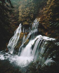Panther Creek Falls 0.4 mile hike Washington (close to Oregon)