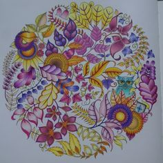 Johanna Basford | Picture by Timea Torok | Colouring Gallery Lyra Youngster Hi-Quality 36, Faber Castell 24
