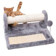 PAWZ Road Cat Scratching Post and Pad, Sisal-Covered Scratch Posts and Pads with Play Ball Great for Kittens and Cats Tall Cat Scratching Post, Cat Activity, Cat Scratcher, Space Cat, Cat Supplies, Dog Behavior, Dog Care, Cat Toys, Cool Cats